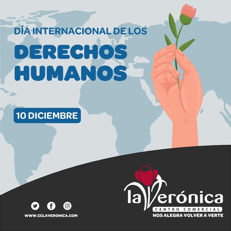 RSC Día Internacional de los derechos humanos, Centro Comercial La Verónica