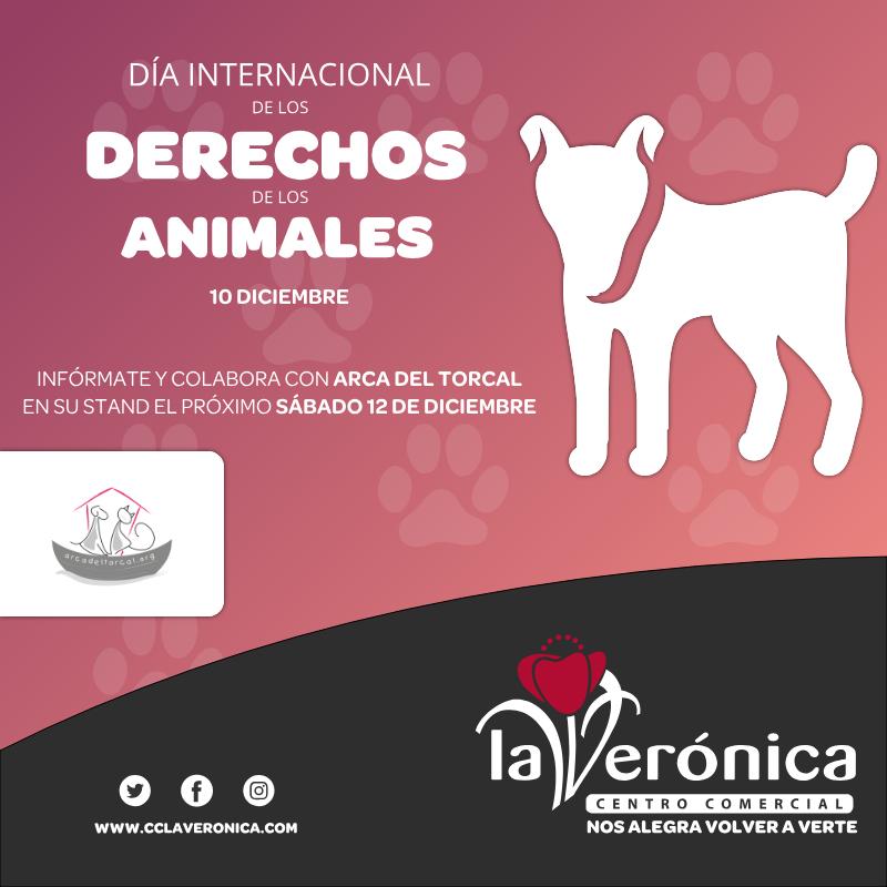 Día Internacional de los derechos de los animales, Centro Comercial La Verónica