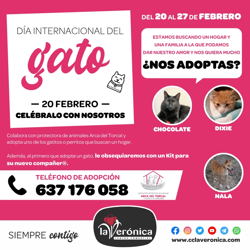 Día Internacional del Gato, Centro Comercial Comercial la Verónica