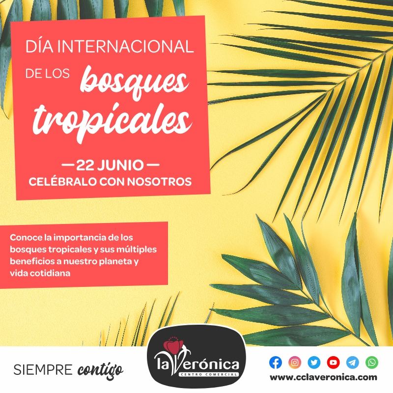 Día Internacional de los Bosques Tropicales, Centro Comercial la Verónica