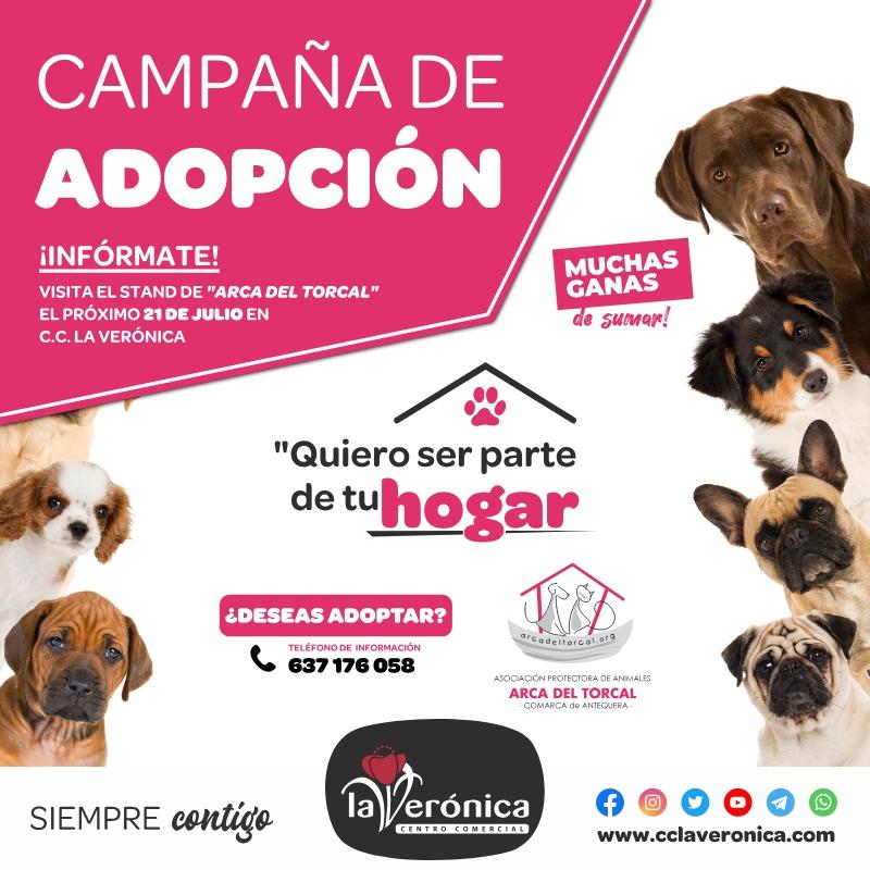 Día Mundial del Perro, Centro Comercial la Verónica